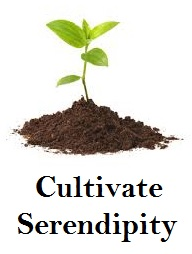cultivate serendipity