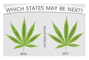 marijuana, which states may be next