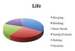 pie of life